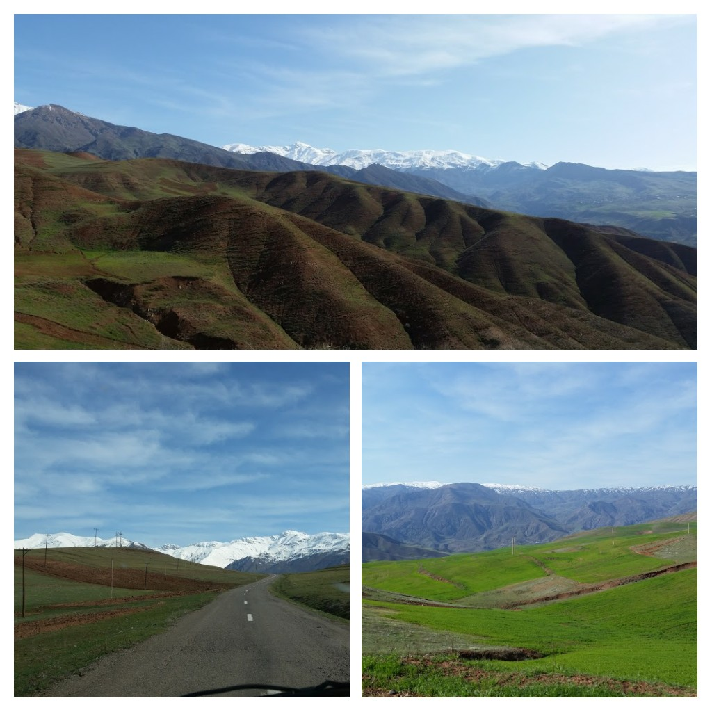 Views from the car, Alamut Valley.